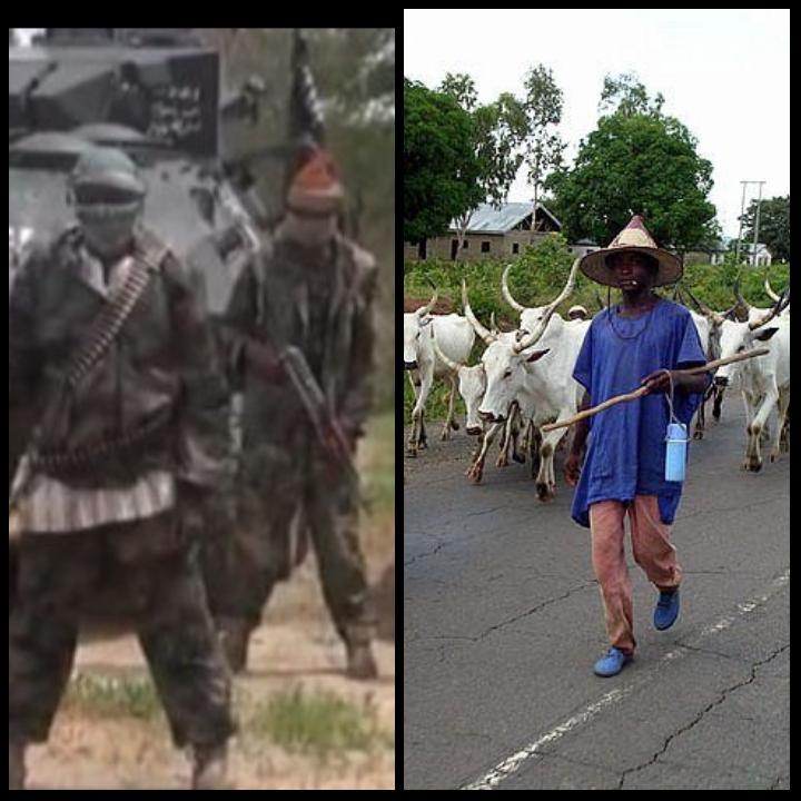 Bokoharam Fighters Kill 19 Fulani Herdsmen In Gun Battle.